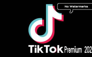What is TikTok Premium for?